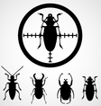 Bug in crosshair - insect insecticide vector image vector image