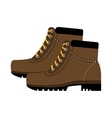 colorful boots with laces graphic vector image vector image