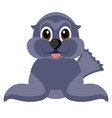 isolated cute seal vector image vector image
