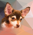 Low poly geometric portrait of chihuahu dog vector image