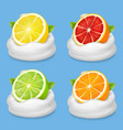 orange lime grapefruit and lemon in yogurt vector image