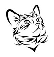 portrait a cat cute kitten black white vector image