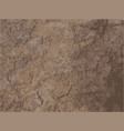 posterized brown dirt stone granite texture vector image