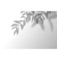 realistic shadow overlay vector image