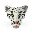 Wild cat irbis leopard snow bars in vector image