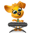 yellow dog is playing synthesizer vector image