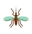 Anopheles mosquito vector image