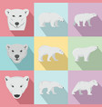 polar bear baby white icons set flat style vector image