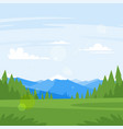rocky mountains and forest vector image