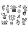 set of hand drawn cactus sketch vector image