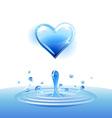 Splash of water vector image