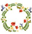 with hummingbirds butterflies vector image