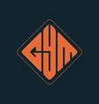 Gym - original lettering or logo fitness logotype vector image