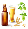 beer bottle brown glass with a full glass vector image