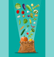 canvas bag full of vegetables vector image vector image