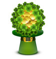 green clover leaves and gold coins ball in top vector image vector image