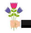 hand holding bunch flower natural decoration vector image