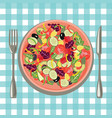 healthy fresh food in a plate and vegetables on a vector image
