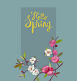 hello spring card for spring season with flowers vector image vector image