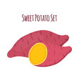 batat sweet potato and slices organic vegetable vector image vector image