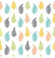botanical of fern leaf vector image vector image