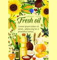 ingredients of natural oil produce vector image