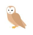 owl or eagle-owl bird vector image vector image