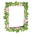 pink flower and leaf frame vector image vector image