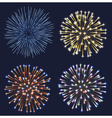 Set of Fireworks vector image vector image