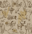 Animals - Hand drawn pack vector image vector image
