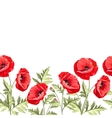 Bunch poppy flowers on a white background vector image vector image