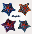 collection realistic starfishes for design vector image vector image