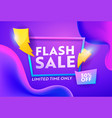 flash sale discount poster online banner design vector image