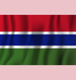 gambia realistic waving flag national country vector image vector image