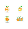 orange logo template vector image