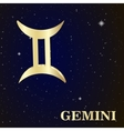 Sign of the zodiac Gemini is the starry sky vector image vector image