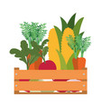 wooden box with vegetables isolated icon vector image vector image