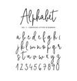 hand drawn alphabet modern monoline vector image
