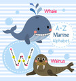 letter w tracing whale walrus marine alphabet