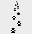 ootprints of dogs 2 vector image