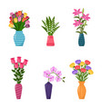 set vases with flowers collection flower vector image