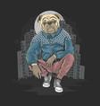 bull dog pit bull gangster at city artwork ve vector image vector image