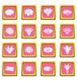detailed flower icons set pink square vector image