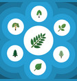 flat icon natural set of acacia leaf linden vector image vector image