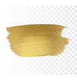 gold paint brush texture vector image