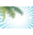 Palm Leaf or Coconut leaf Background vector image vector image