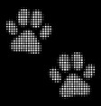 paw footprints halftone icon vector image
