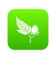 raspberry icon green vector image vector image