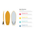 surfing board equipment infographics template vector image