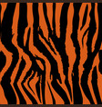 background pattern texture tiger and zebra strip vector image vector image